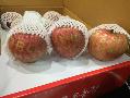 오늘아침, 사과가 도착했어요!